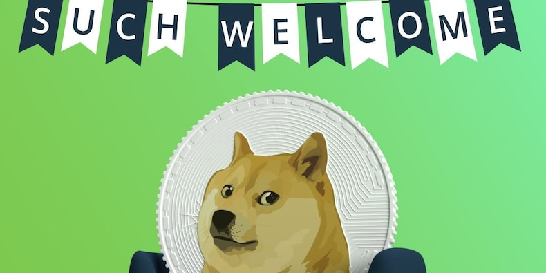 Much wow: Dogecoin rockets 48% to record high after eToro ...